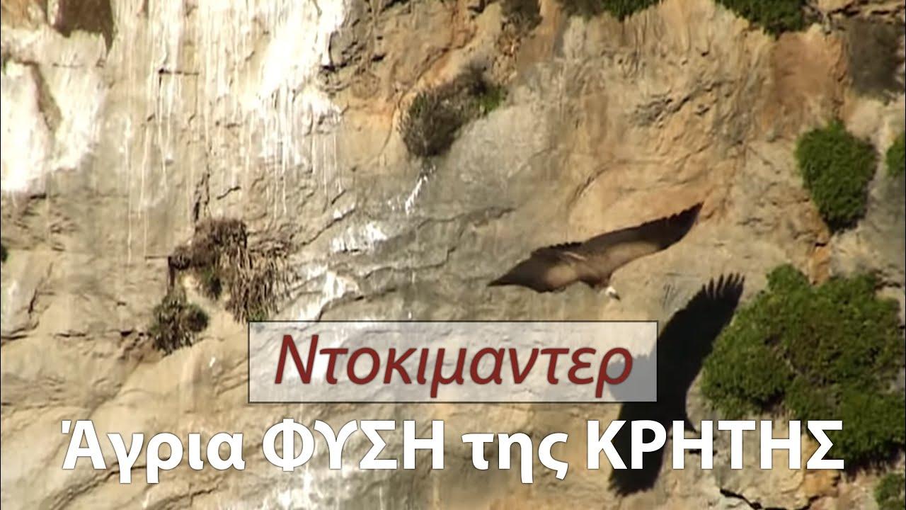 Η άγρια φύση της Κρήτης